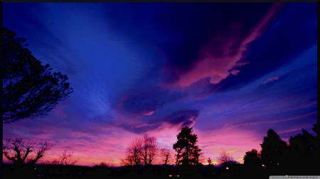 Amazing Skyscape - pink, violet, sky, blue, clouds, trees, nature