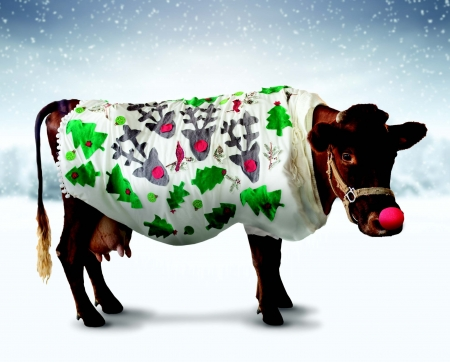 Christmas cow - cow, funny, christmas, animal, craciun, rudolf, red nose
