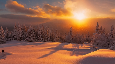 Winter fire - glow, fiery, beautiful, sunset, trees, sky, winter, valley, fire, mountain, rays, snow, landscape