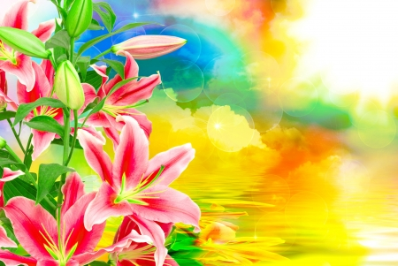 Lilies background - pretty, colorful, lovely, background, colors, lilies, beautiful, fantasy, flowers