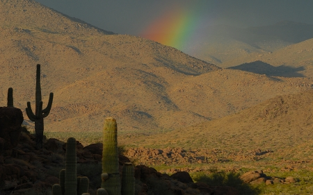 Old West - desert, saguaro, old west, mountains, rainbow, cactus