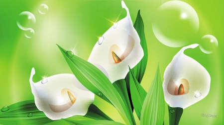 Cala Lilies and Bubbles - lilies, spring, floral, lime, Easter, green, bubbles, flowers, lily, Firefox Persona theme