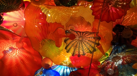Blown Glass by Chihuly - glass, art, chihuly, blown