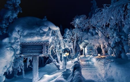 Winter Night - Snow, Nature, Night, Winter