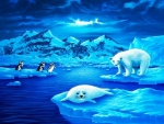 Arctic and antartic worlds