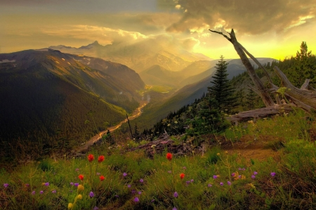 nature's view - mountain, cool, flower, nature, river, fun