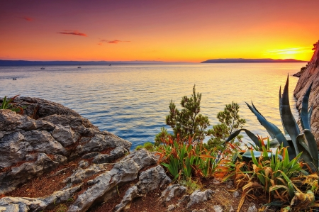 Californian Sunset - rocks, plants, agave, new mexico, sky, sea