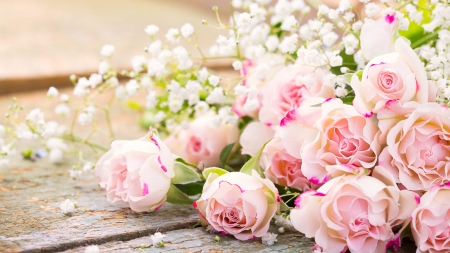 Pink Roses And Babies Breath