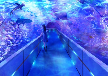 Aqua world - world, fish, manga, shark, girl, purple, anime, aqua, blue