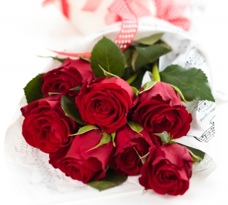 Red Roses - red, flowers, roses, bouquet