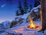 Bonfire Night in the Winter Forest