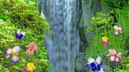 Mountains Falls - iris, forest, waterfall, flowers, mountains, trees, nature