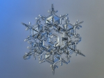 Snowflake Under Microscope