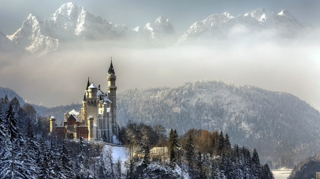 Winter Morning in Bavaria - mist, landscape, neuschwanstein, castle, alps, mountains, peaks