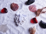 Hearts And Seashells On White Sand