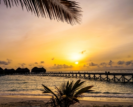 Maledives Bungalows Pier - shore, horizon, pier, bungalow, palm, sunset, trees, sea, beach, maldives, ship, nature