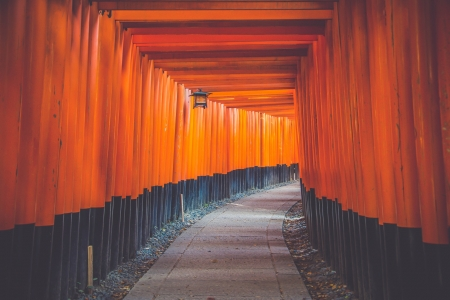 Fushimi Inari Shrine - shrine, inari, kyoto, torii, red, gate, japan, japanese