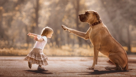 Jump! - little, caine, animal, play, cute, big, girl, andy seliverstoff, copil, child, funny, jump, dog