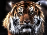 Beautiful Fractal Tiger