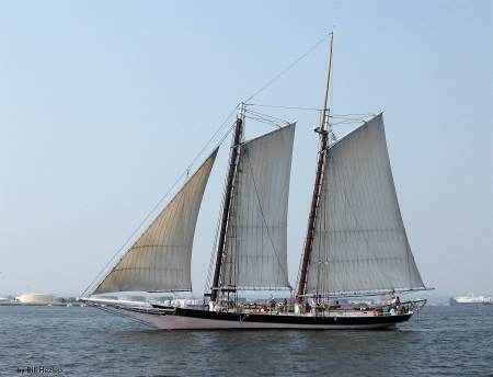 The Pungy Schooner Lady Maryland - Schooner, Replica Vessel, Lady Maryland, Baltimore Maryland, Chesapeake Bay