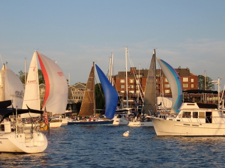 Sailing Through the Harbor - Sailing, Sailboats, Annapolis Maryland, Chesapeake Bay, Maryland