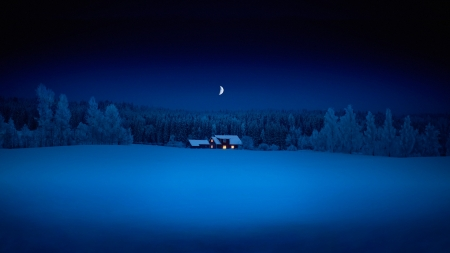 In the night - forest, month, house, snow, night