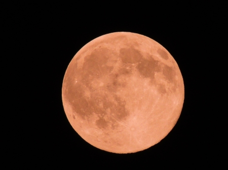 Super Moon - Photography, Super Moon, Sky, Space