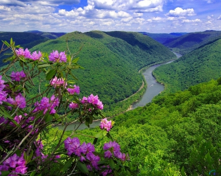 Kanawha River in the hills of West Virginia,USA - kanawha, gorge, spring, clouds, usa, flowers, nature, river, hill