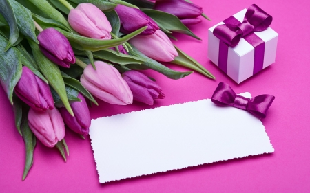Pink and Purple - romantic, fresh, bow, gift, purple, bouquet, love, flowers, tulips, pink