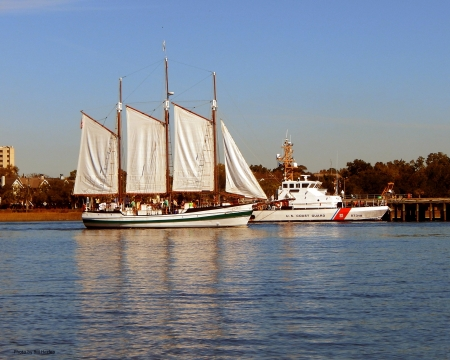 Tourist Schooner - Schooner, South Carolina, Charleston, Sailing Vessel