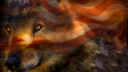 Freedom Wolf - USA, red white and blue, collage, flag, United States, Independence Day, 4th of July, wolf, Firefox Persona theme
