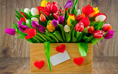 Basket of colorfull tulips ♥ - colorful, romantic, fresh, hearts, bouquet, love, tulips, flowers is, gift First, tulip, wood