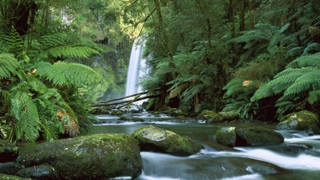 Australia10 - fun, cool, forest, waterfall, river, nature