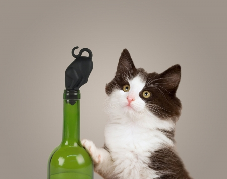 Gotcha'! - origami, bottle, cat, creative, situation, glass, green, mouse, funny, paper, kitten, pisica