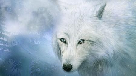Spirit Of The White Wolf Other Animals Background