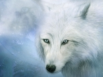 Spirit of the White Wolf