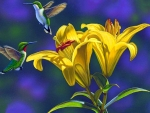 Hummers with Yellow Lilies