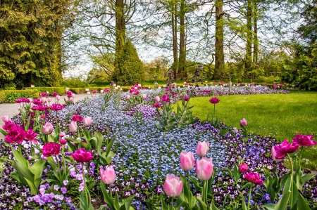 Flowers garden - pretty, lovely, grass, beautiful, spring, park, trees, freshness, floral, alleys, flowers, garden, tulups