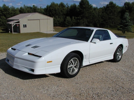 1985 Pontiac Firebird Trans Am - Pontiac, 1985, car, Firebird, Trans Am