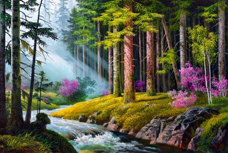 Forest creek - forest, sunshine, river, nature