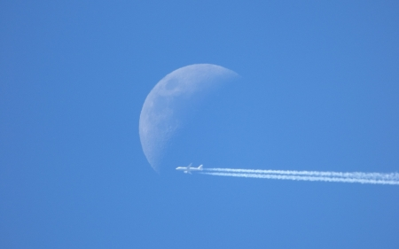 Flight - flight, moon, nature, sky
