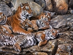 Beautiful Tigers
