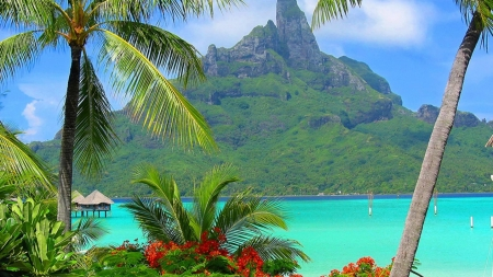 Bora Bora Resort,South Polynesia - island, polynesia, sea, bora, mountains, resort, palm, nature
