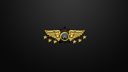 Counter Strike - Global Offensive Ranking - video game, game, system, honors, Army, gaming, CS, awards, Counter Strike, military, Counter Strike Global Offensive, ranking, Supreme Master First Class, Counter Strike GO, CS GO, shooter, legendary, FPS, Global Offensive, CS Global Offensive, medals