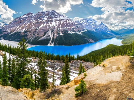 Peyto Lake in Alberta, Canada - canada, snow, clouds, trees, nature, mountain, lake