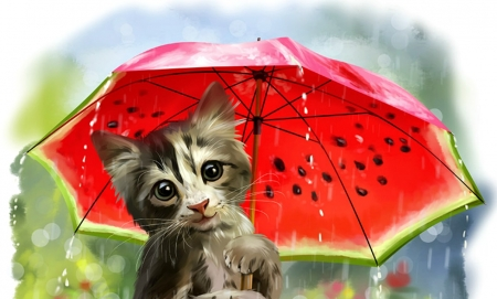 Summer rain - art, lorri kajenna, fantasy, summer rain, pisica, umbrella, kitten, watermelon, green, red, luminos, cat