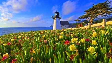 Scenic Lighthouse - beach, sky, sea, flowers, lighthouse, trees, nature