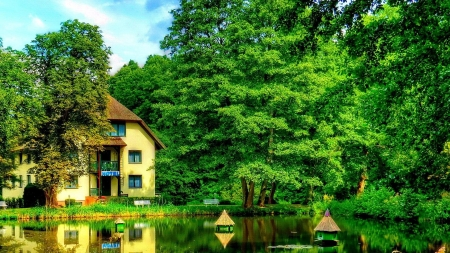 Rest in the Forest - rest, forest, house, calmness, trees, lake, relex, serenity, nature, reflection