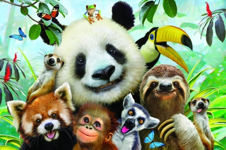Selfies - luminos, bear, parrot, animal, panda, monkey, red panda, fantasy, bird, wild, jungle, funny, face, selfies, howard robinson