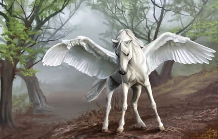Pegasus FC - art, equine, beautiful, horse, winged, illustration, artwork, animal, pegasus, painting, wide screen